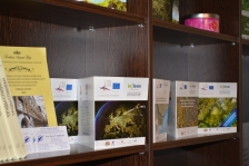 INFROM: rezultāti no zinātniskās sadarbības, lai pārraudzītu pārrobežu dabas tehnoloģiskās sistēmas